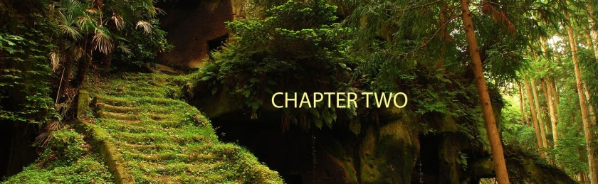 hidden-forest-temple-wallpapers_22304_1920x1200 copy