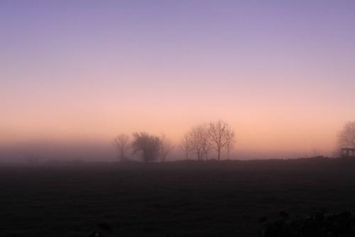 DawnPhoto: Norma Scheibe