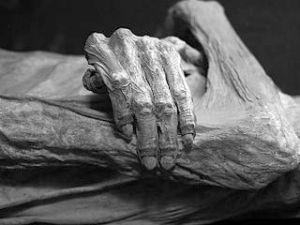 Detail of Guanajuato mummy, Mexico. Museo de las Momias de Guanajuato Tomas Castelazo