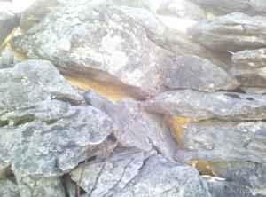 Photo: Kinvara Stone EO'D