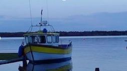 Kinvara  Harbour Photo: Norma Scheibe
