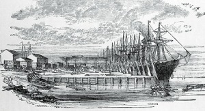 Galway wharf c1850