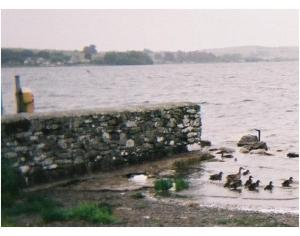 Loughrea Lake Wikimedia Commons