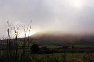 Burren mist Photo: Norma Scheibe