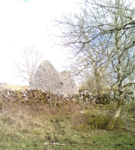 Temple Cronan, the Burren, County Clare Photo: EO'D
