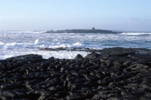 Crab Island, Doolin, County Clare Photo: Dr Charles Nelson Wikimedia Commons
