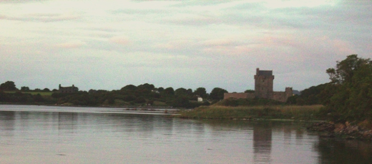 Fever Hospital (left of image) and Dunguaire Castle. Photo: BO'D