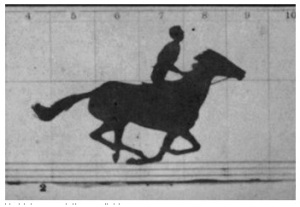 "Still from Horse in Motion Eadweard Muybridge ""Sallie Gardner"" owned by Leland Stanford 1878 Library of Congress Prints and Photographs Division"