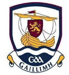 Crest of G.A.A. Galway inter county Hurling and Gaelic Football teams. Wikimedia Commons