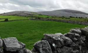 The Burren Photo: EO'D
