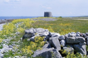 Martello Tower Aughinish Photo: A McCarron Wikimedia Commons