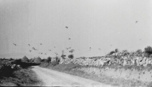 Kinvara c.1950 Cresswell Archives