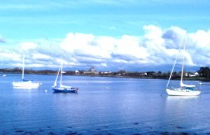 April in Kinvara Photo: EO'D