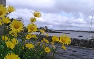 Kinvara Bay Photo: EO'D