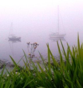 Morning mist Photo: EO'D