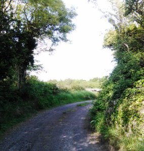 A bend in the road Tawnagh Co. Galway Photo: EO'D
