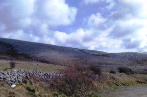 Burren walls Photo: EO'D