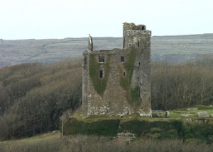 Ballinalackin Castle Bogman Wikimedia Commons